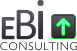 ebi consulting & web design